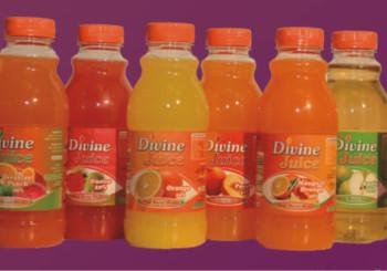 Fruit Juices – Nectars